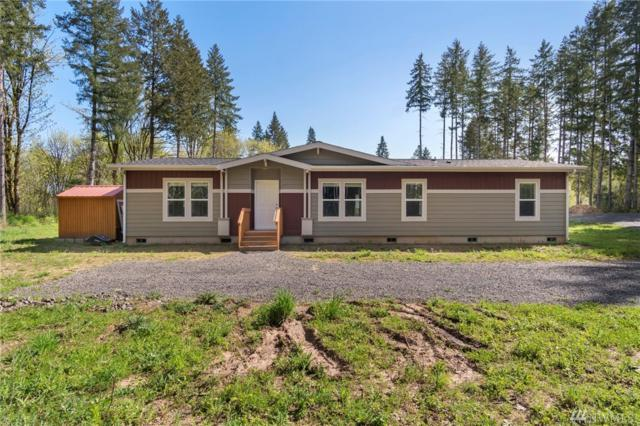 133 Dunivan Rd, Vader, WA 98593 (#1282794) :: Homes on the Sound
