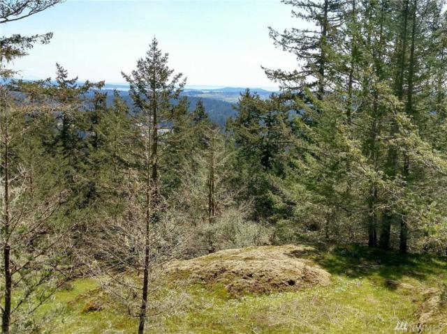 0-XXX Cady Mountain Rd, San Juan Island, WA 98250 (#1283024) :: Real Estate Solutions Group