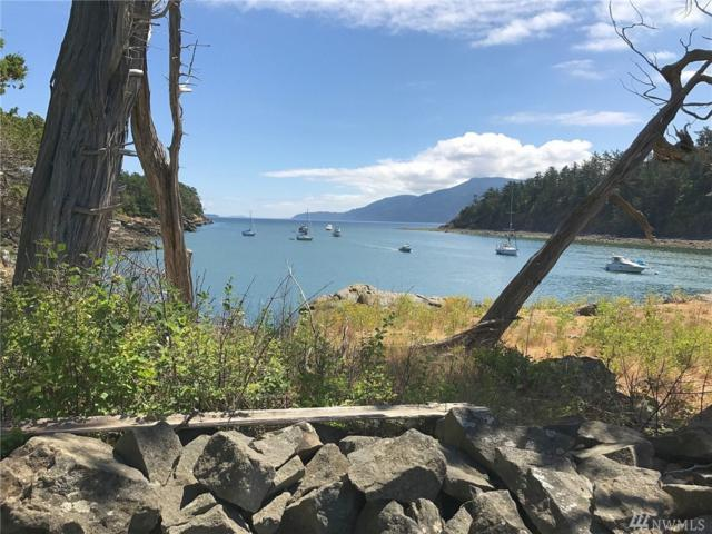 0 Harnden Island, Orcas Island, WA 98280 (#1283040) :: The Kendra Todd Group at Keller Williams