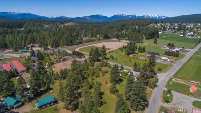 180 No. 245 Rd, Roslyn, WA 98941 (#1283176) :: Homes on the Sound