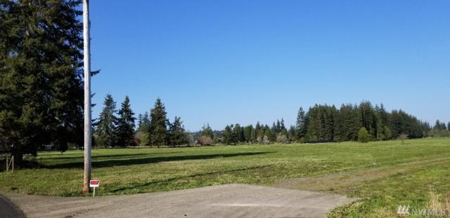 20 Bear Rd, Elma, WA 98541 (#1283811) :: Better Homes and Gardens Real Estate McKenzie Group