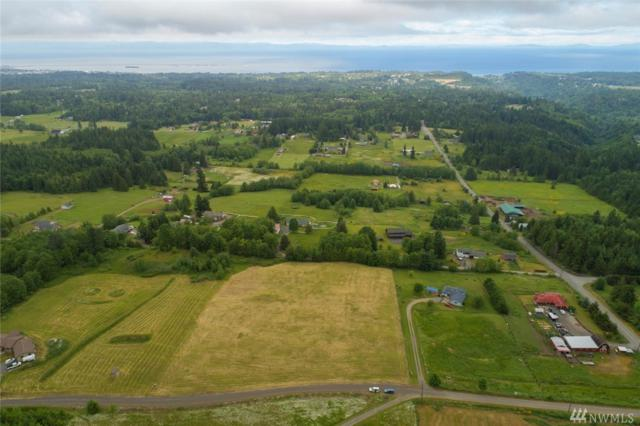 92 Black Bear Trail, Port Angeles, WA 98362 (#1283874) :: Real Estate Solutions Group