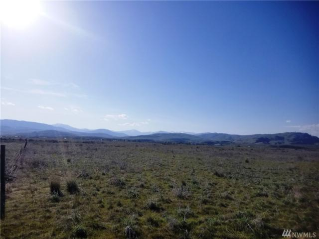 0-TBD Sand Dust Rd, Omak, WA 98841 (#1284818) :: Homes on the Sound