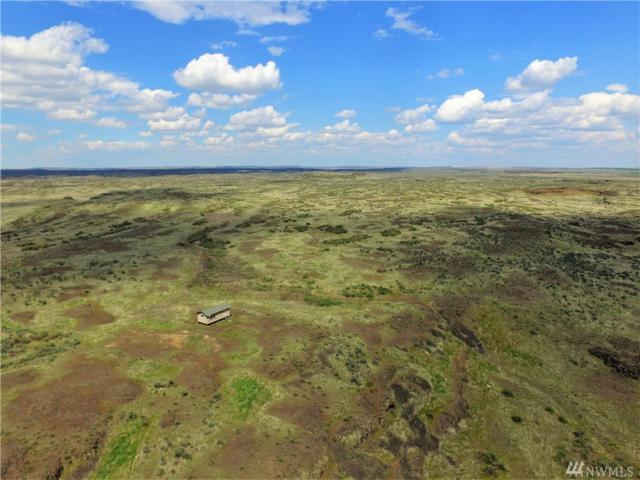38 Acres Recreational Land, Moses Lake, WA 98837 (#1284863) :: Homes on the Sound