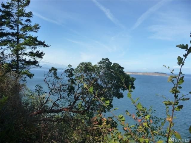 540 Raven Rd, Port Townsend, WA 98368 (#1284906) :: Homes on the Sound