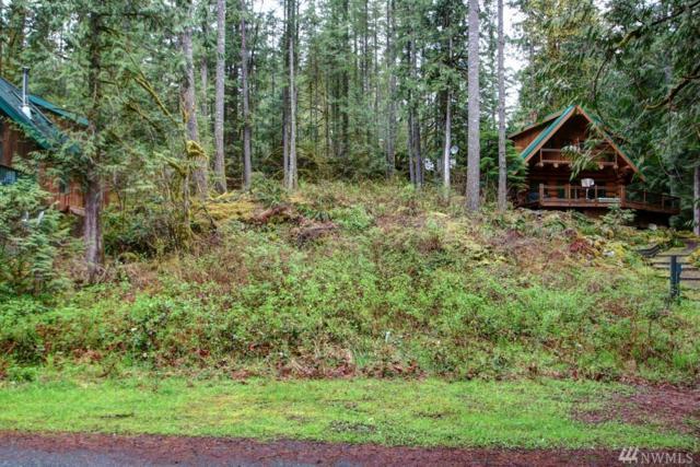 7079 Olympus Wy, Glacier, WA 98244 (#1285110) :: Morris Real Estate Group