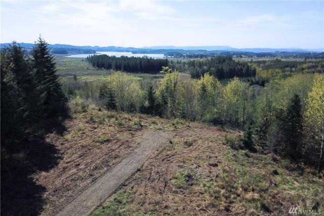 147 Sky Country Rd, Toutle, WA 98649 (#1285236) :: Crutcher Dennis - My Puget Sound Homes