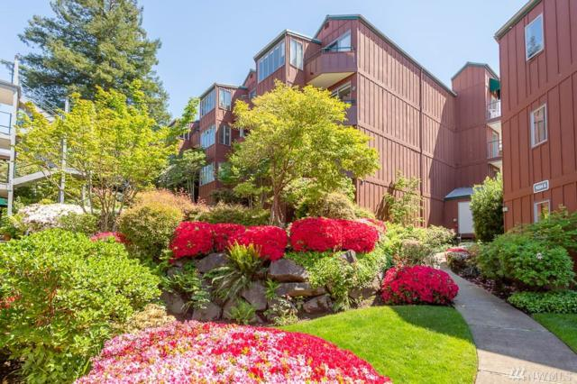 1024 5th Ave S B204, Edmonds, WA 98020 (#1285392) :: Icon Real Estate Group