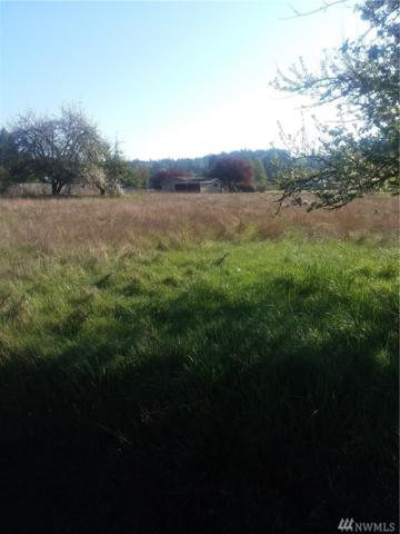 510-xxx NE Old Belfair Hwy, Belfair, WA 98528 (#1285747) :: Homes on the Sound