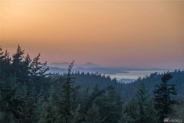 94 Roberts Point Trail, Orcas Island, WA 98245 (#1285870) :: Ben Kinney Real Estate Team