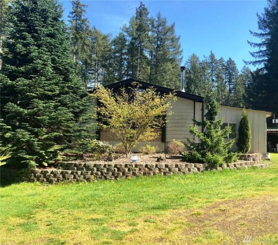 101 W Frosty Lane, Shelton, WA 98584 (#1285898) :: Real Estate Solutions Group