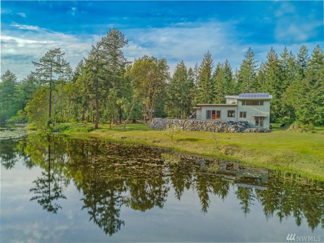 96 Pleasant Pond Lane, Friday Harbor, WA 98250 (#1286301) :: Homes on the Sound