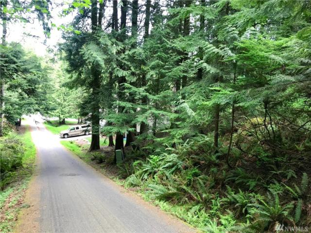 17 Amberland Wy, Bellingham, WA 98229 (#1286394) :: Homes on the Sound
