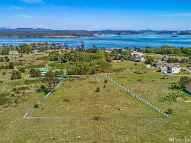 35-Lot Meadow Lane, San Juan Island, WA 98250 (#1286523) :: Homes on the Sound