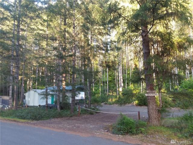 190 N Glenwood Rd, Hoodsport, WA 98548 (#1286875) :: Homes on the Sound