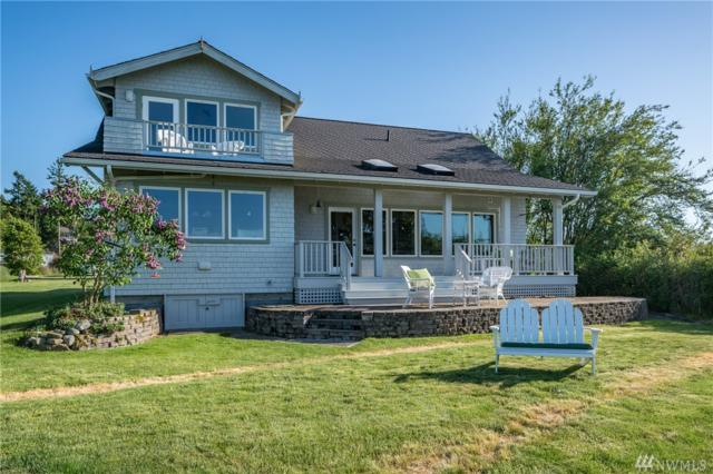 100 Tinkham Lane, Lopez Island, WA 98261 (#1287159) :: Homes on the Sound