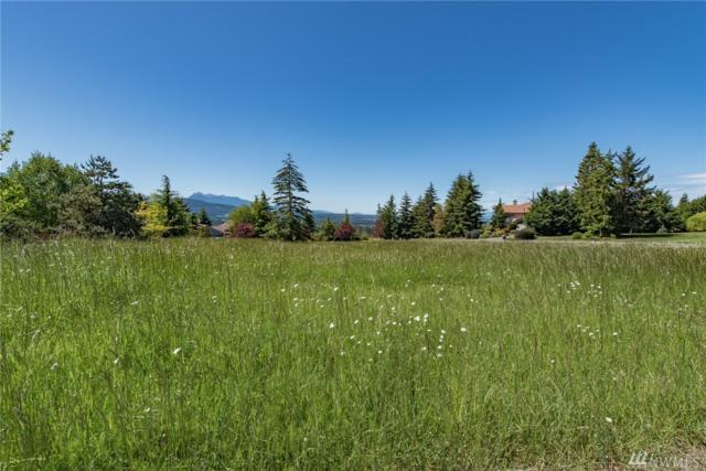 0 Doe Run Rd, Sequim, WA 98382 (#1287226) :: Real Estate Solutions Group