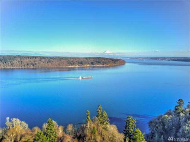 1111 115th St Ct NW, Gig Harbor, WA 98332 (#1287267) :: Better Homes and Gardens Real Estate McKenzie Group