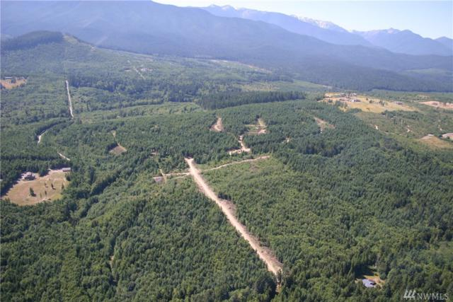 0-Lot 1 Afternoon Hill Lane, Port Angeles, WA 98362 (#1287405) :: Kwasi Bowie and Associates
