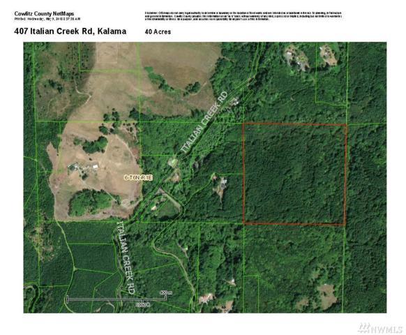 407 Italian Creek Rd, Kalama, WA 98625 (#1287473) :: Better Homes and Gardens Real Estate McKenzie Group