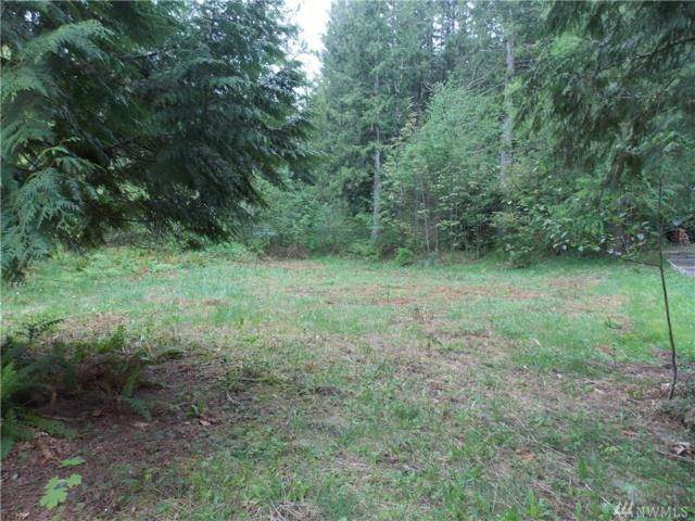 22236 Bluewater Dr SE, Yelm, WA 98597 (#1287600) :: Better Homes and Gardens Real Estate McKenzie Group