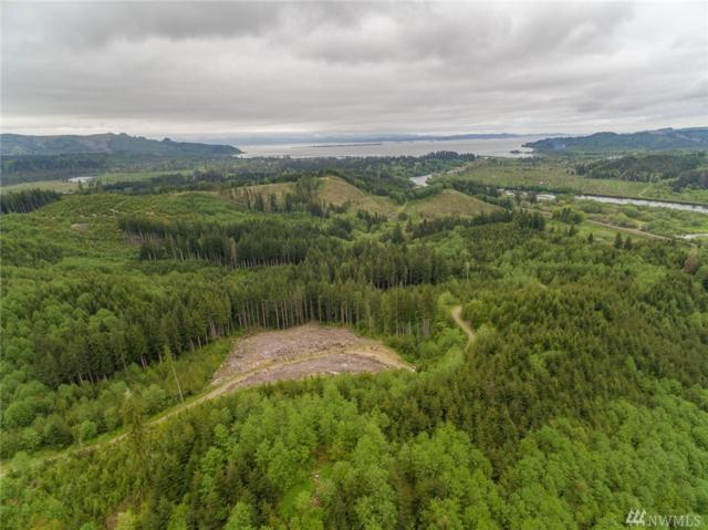 1 Sr4 Hwy, Naselle, WA 98638 (#1287810) :: Homes on the Sound