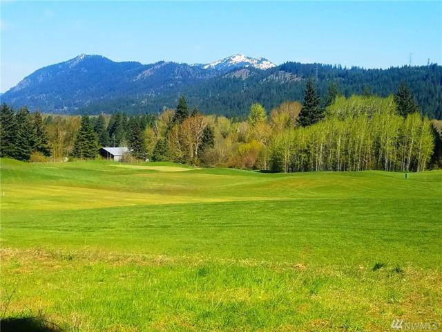 6 Saint Andrews Dr, Cle Elum, WA 98922 (#1288006) :: Better Homes and Gardens Real Estate McKenzie Group
