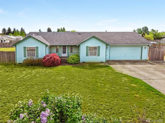 9131 Applegate Lp SW, Rochester, WA 98579 (#1288190) :: Real Estate Solutions Group