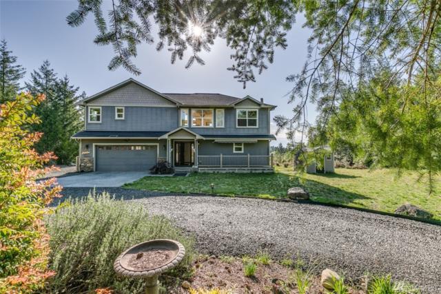 117 Glacier Ridge Rd, Quilcene, WA 98376 (#1288295) :: Homes on the Sound