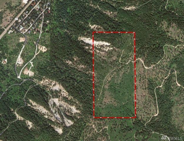0-XX Fs Road 6601, Leavenworth, WA 98826 (#1288373) :: Icon Real Estate Group