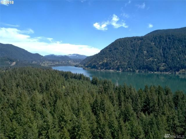 175 Yale Landing Rd, Cougar, WA 98616 (#1288728) :: Homes on the Sound