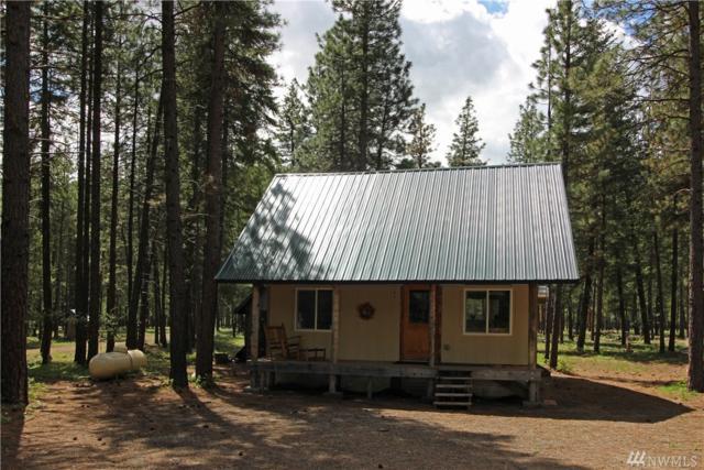 113 Lost River Rd, Mazama, WA 98833 (#1288995) :: Homes on the Sound