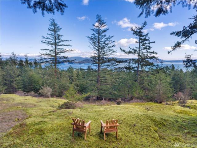 688 Pine Ridge Dr, Orcas Island, WA 98280 (#1289491) :: Alchemy Real Estate