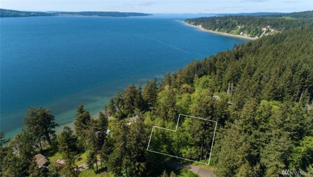 0 Brainers Rd, Freeland, WA 98249 (#1289496) :: Real Estate Solutions Group
