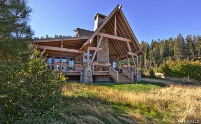 150 Three Queens Lp, Cle Elum, WA 98922 (#1289635) :: The Home Experience Group Powered by Keller Williams