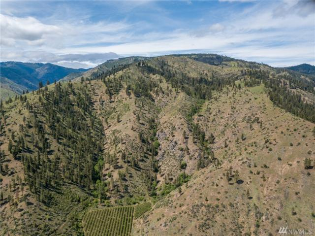 0 Entiat River Rd, Entiat, WA 98822 (#1289657) :: Real Estate Solutions Group