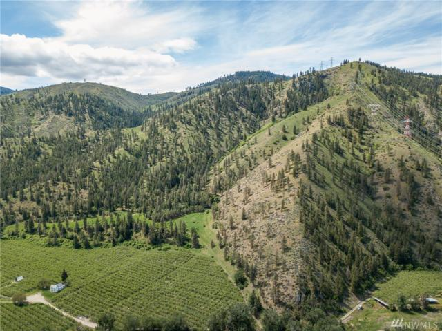 0 Entiat River Rd, Entiat, WA 98822 (#1289671) :: Crutcher Dennis - My Puget Sound Homes