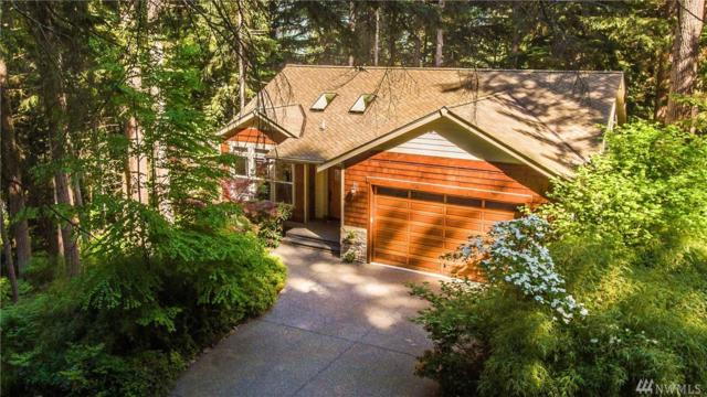 14 Gooseberry Cir, Bellingham, WA 98229 (#1290041) :: Homes on the Sound