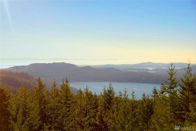 0 Buck Mtn Rd, Orcas Island, WA 98245 (#1290180) :: Ben Kinney Real Estate Team