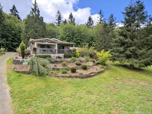 241 E Rasor Rd, Belfair, WA 98528 (#1290389) :: Ben Kinney Real Estate Team
