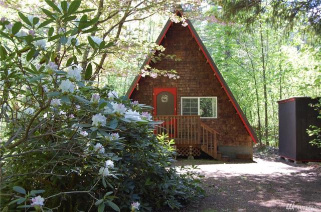 190-N Goldeneye Dr, Hoodsport, WA 98548 (#1290513) :: Homes on the Sound