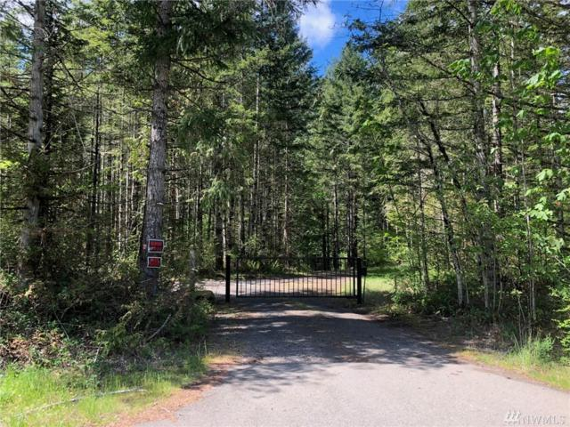 102 Serenity Lp, Quilcene, WA 98376 (#1290679) :: Real Estate Solutions Group