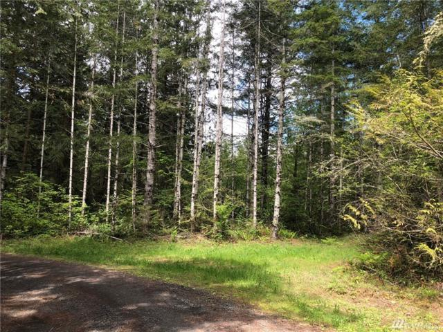1-xxx Serenity Lane Lp, Quilcene, WA 98376 (#1290697) :: Real Estate Solutions Group