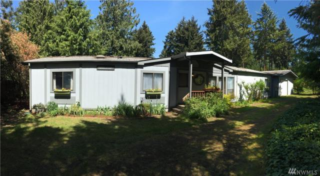 121 Evergreen Lane, Port Hadlock, WA 98339 (#1291080) :: Kwasi Bowie and Associates