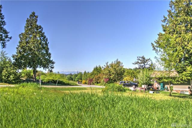 0-Lot 8 Donegal Dr, Point Roberts, WA 98281 (#1291255) :: Ben Kinney Real Estate Team