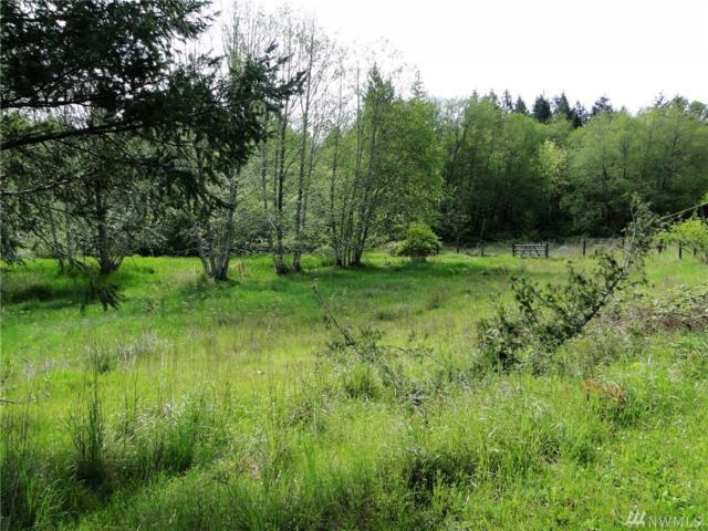 80 E Deer Creek Rd, Shelton, WA 98584 (#1291341) :: Morris Real Estate Group