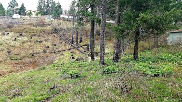 3-Lot 3 Morrison Canyon Lane, Cle Elum, WA 98922 (#1291472) :: Homes on the Sound
