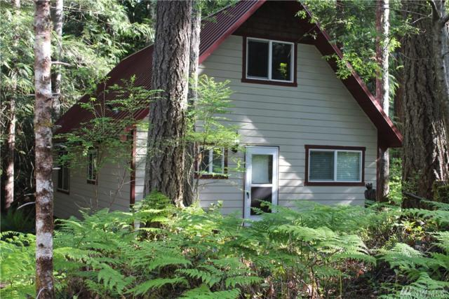 130 N Staircase Dr, Hoodsport, WA 98548 (#1291610) :: Homes on the Sound