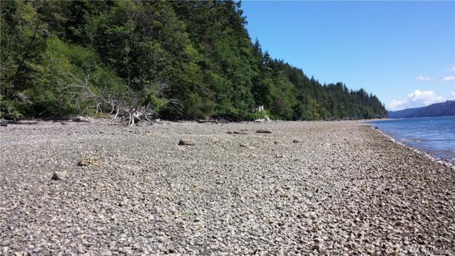 32241 N U.S. Highway 101, Lot 6, Lilliwaup, WA 98555 (#1291695) :: Homes on the Sound