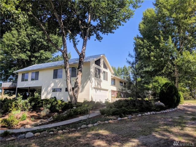 141 Johnson Creek Rd, Omak, WA 98841 (#1291833) :: Icon Real Estate Group